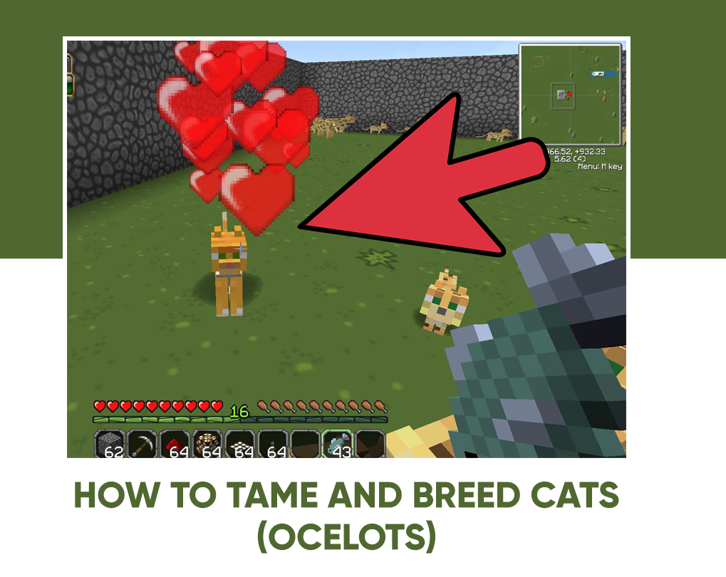 how to tame a cat in minecraft 1.14